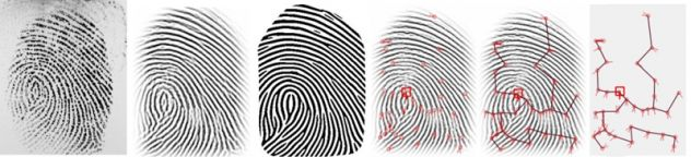 Fingerprint Scan.jpg